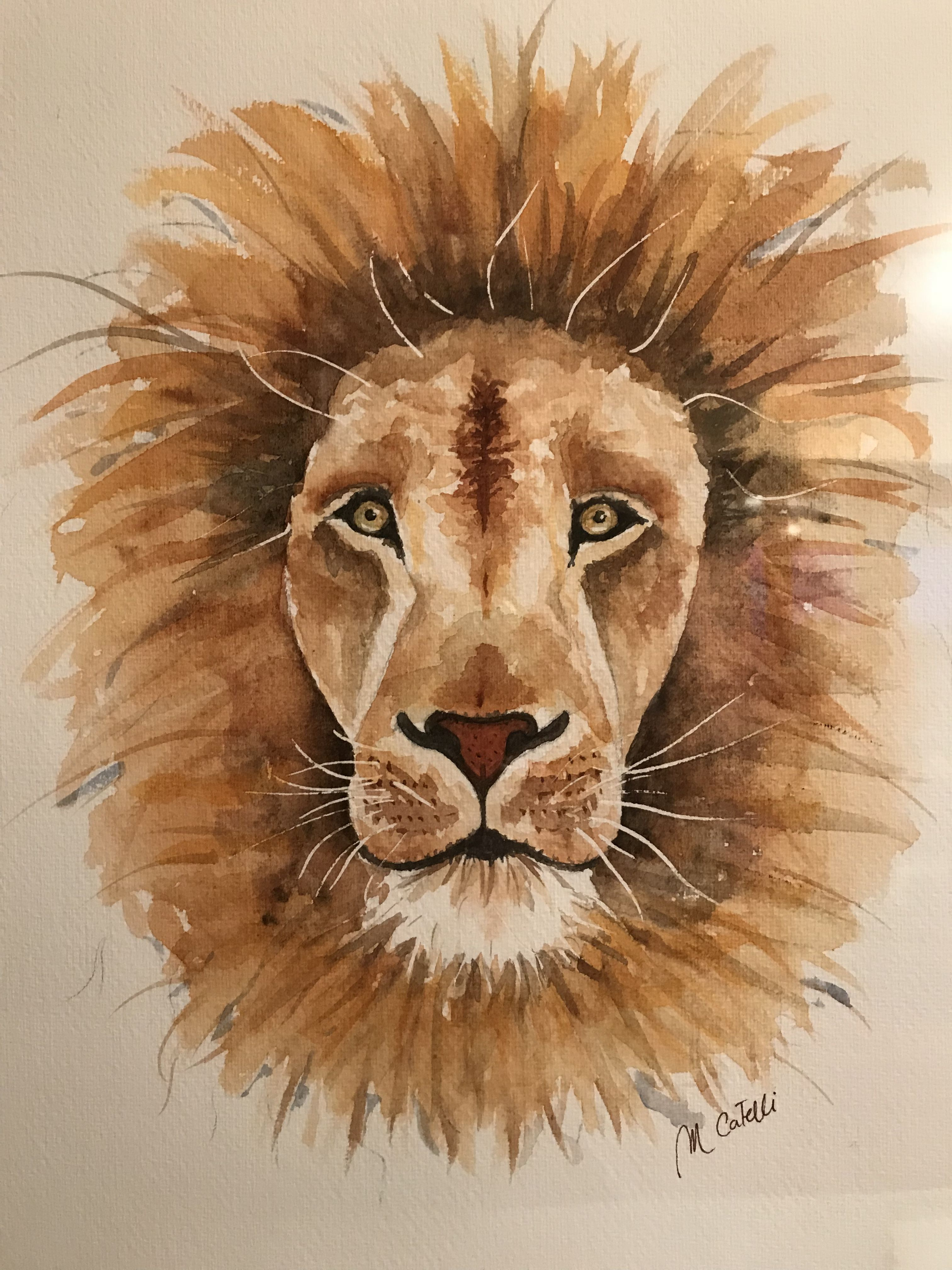 4741df2f0 Lion Art, Bookmarks, Leo, Projects To Try, Watercolors, Leon, Lion