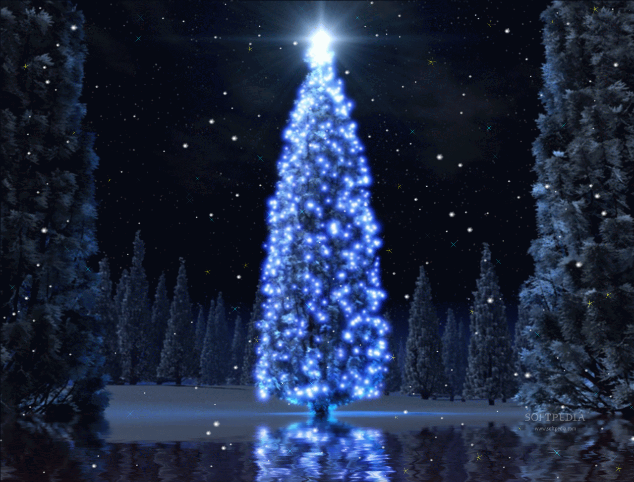 Christmas Tree Animated Wallpaper Download Christmas Tree Pictures Blue Christmas Blue Christmas Tree