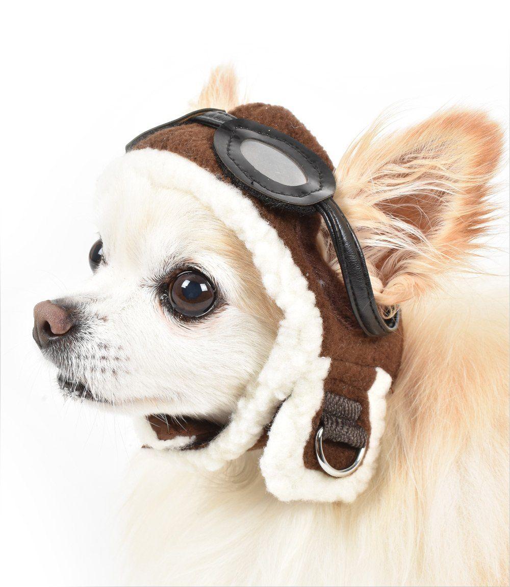 Aviator Hat For Small Dogs Smalldog Aviator Hat Dog Parade