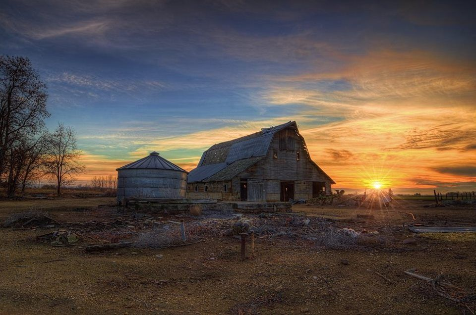 Evening at the Barn. Photo by Kris Franklin.