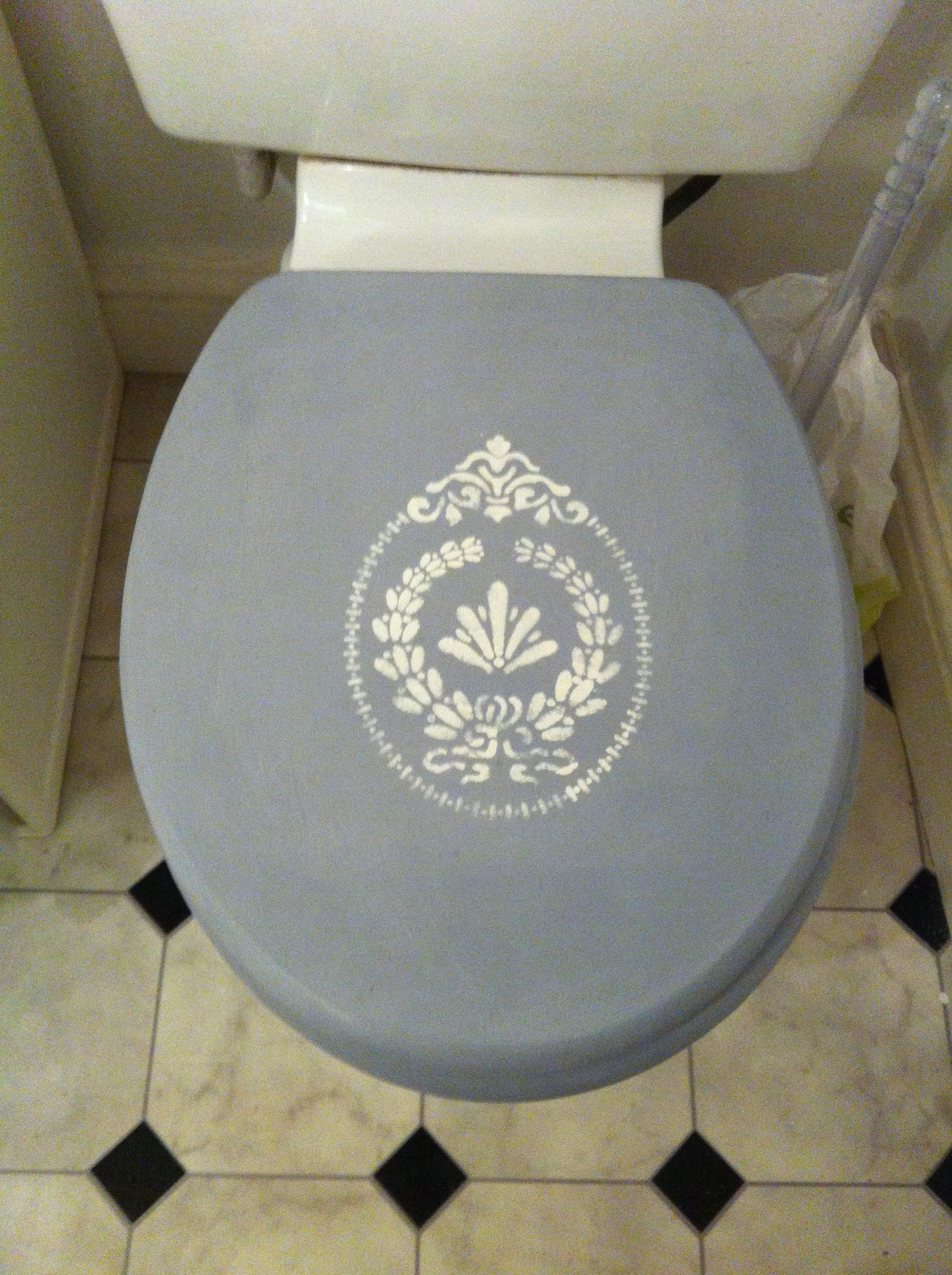 My Toilet Cover Used Annie Sloane Chalk Paint Louis Blue