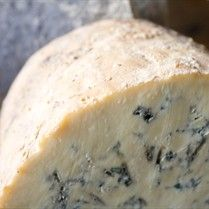 Complete Professional Blue Cheese - The School Of Artisan Food - Love blue mold cheese! Try it in pasta sauce or for gratins!