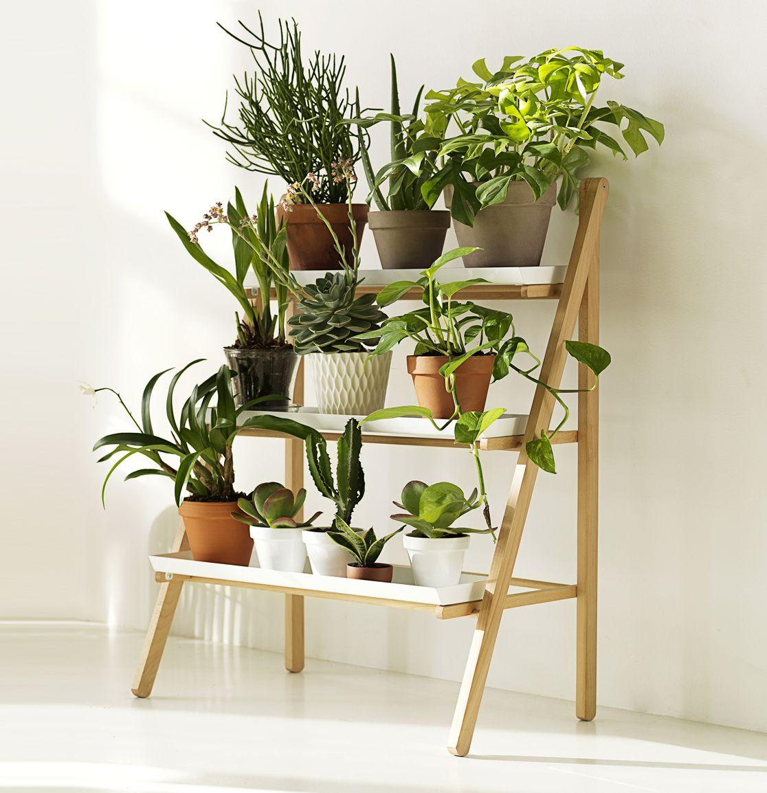 24 Indoor Herb Garden Ideas To Look For Inspiration: Aalto+Aalto Homepage » Pot Steps