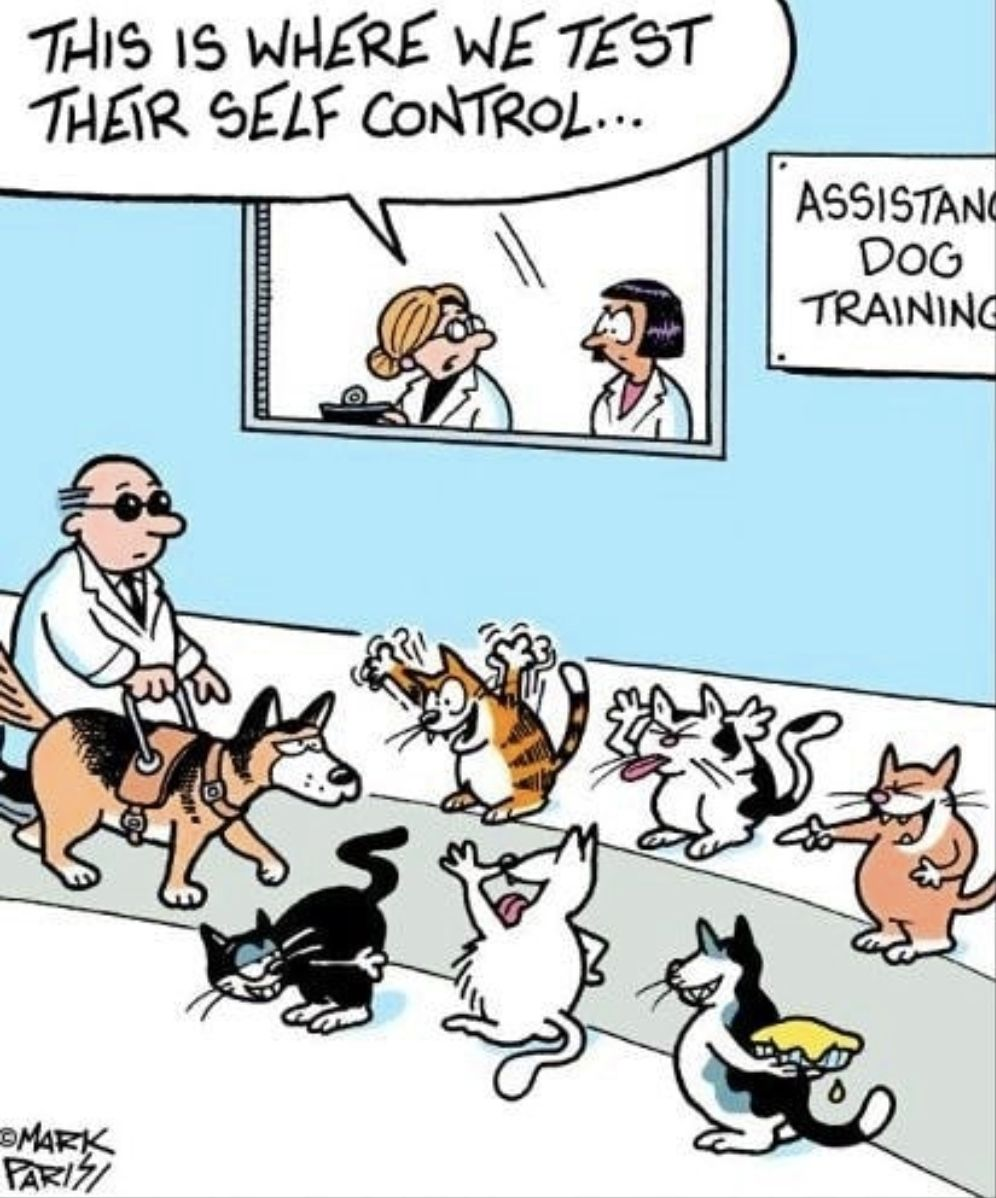 A Dog S Self Control Credits Mark Parisi Otm Tag Your