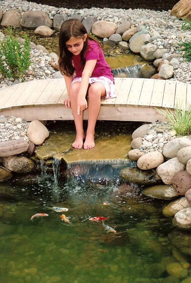 Backyard ponds for small backyards can be built in different options
