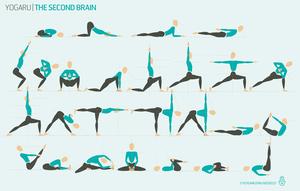 the second brain — yogaru  brain yoga yoga sequences