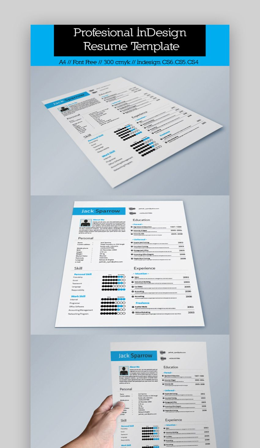 25+ Best InDesign Resume Templates (Free + Pro Downloads