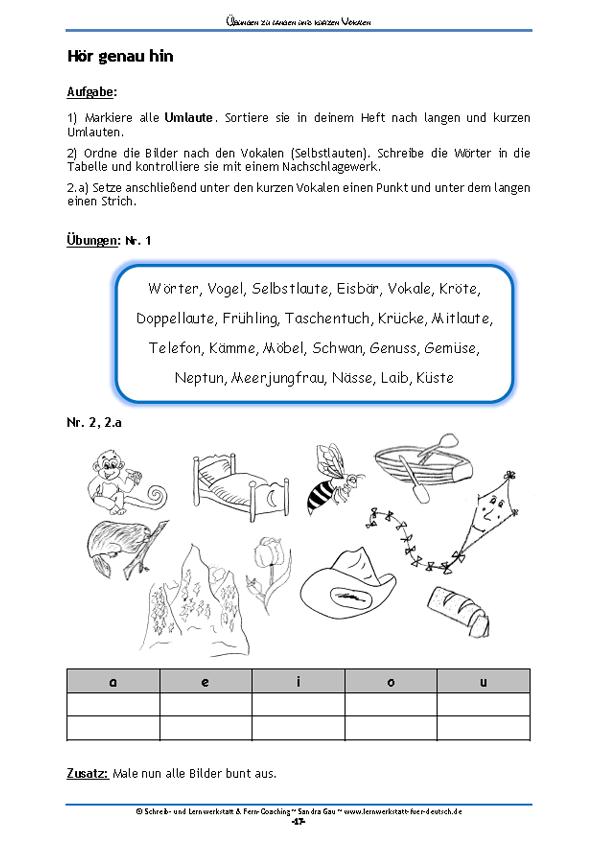 Übungen zu langen und kurzen Vokalen – Deutsch | Rechtschreibung ...