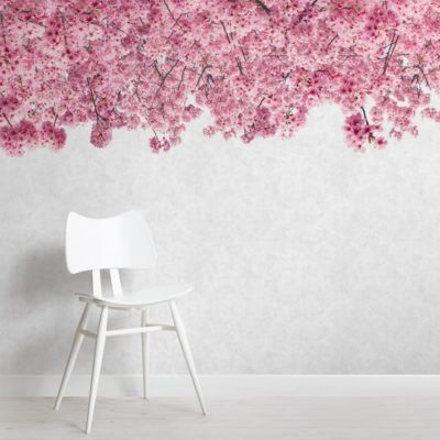 Pink Cherry Blossom Wallpaper Mural | Murals Wallpaper -   19 beauty Wallpaper lights ideas