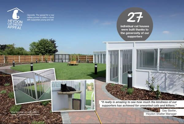 The Uk S Leading Cattery Manufacturer We Build And Install Catteries Cat Pens And Kennels For Boarding And Animal Rescue Charities Cattery Cat Pen Kennel