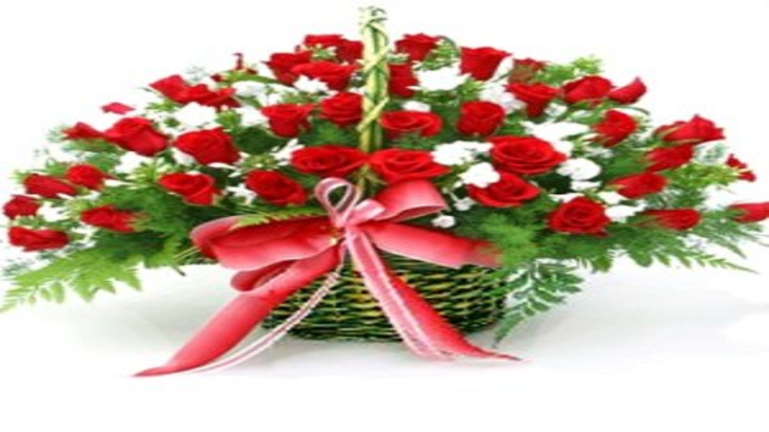 Flowrshop18 offering flower delivery hyderabad send flowers your flowrshop18 offering flower delivery hyderabad send flowers your special person to send flowers hyderabad izmirmasajfo