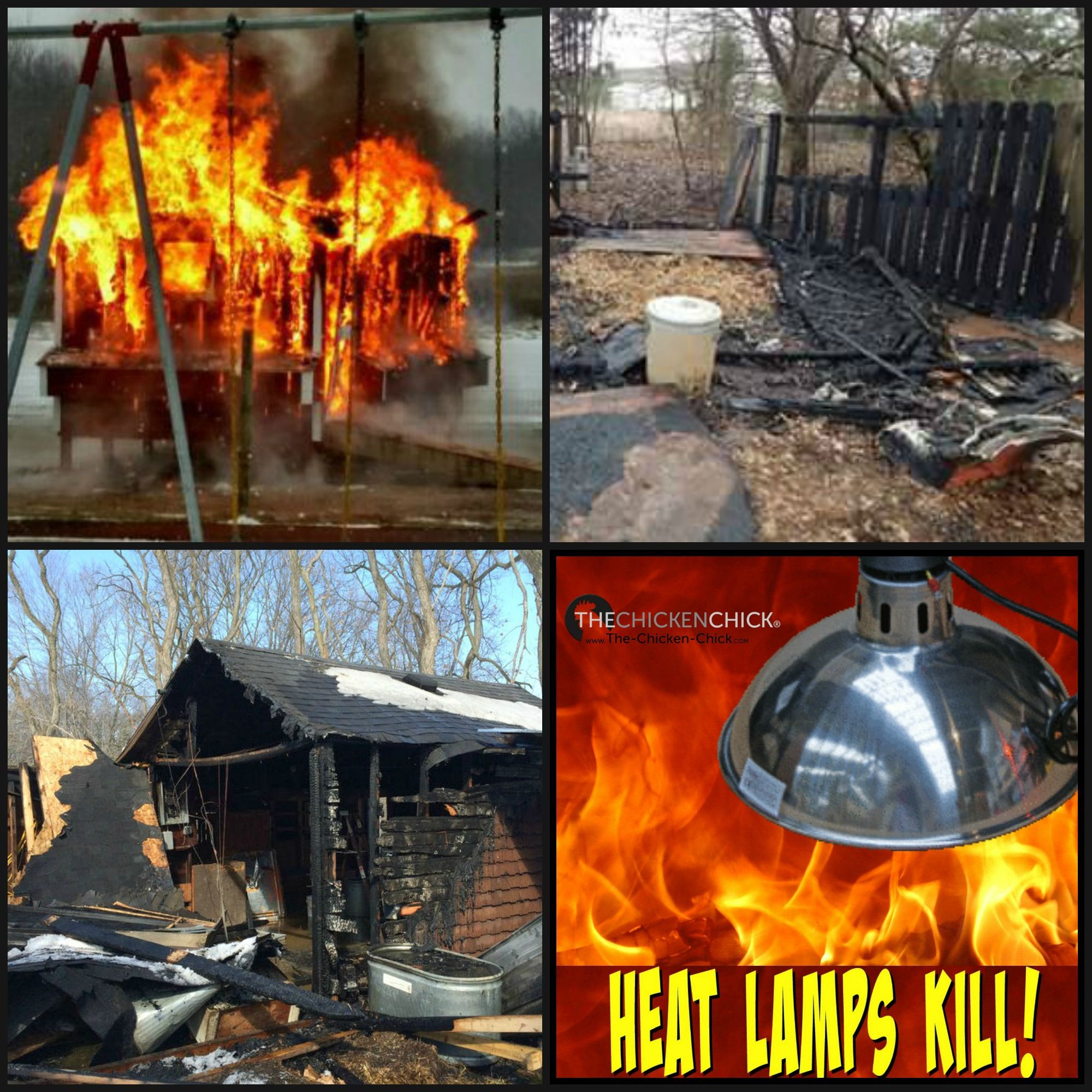 Awesome 15 Chickens Die In Chicken Coop Fire Caused By A Heat Lamp. Geneva, New