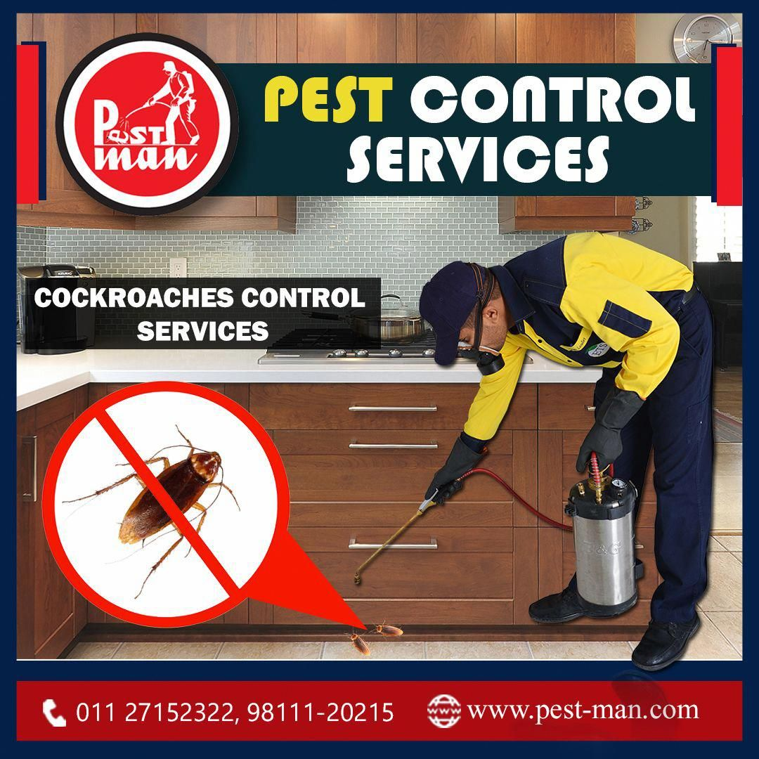 Pestman Is Known For Its Quality Driven Pest Control Service We At Pestman Use Herbal Odourless Eco Friendly Pesticides Pest Control Pests Flea Prevention