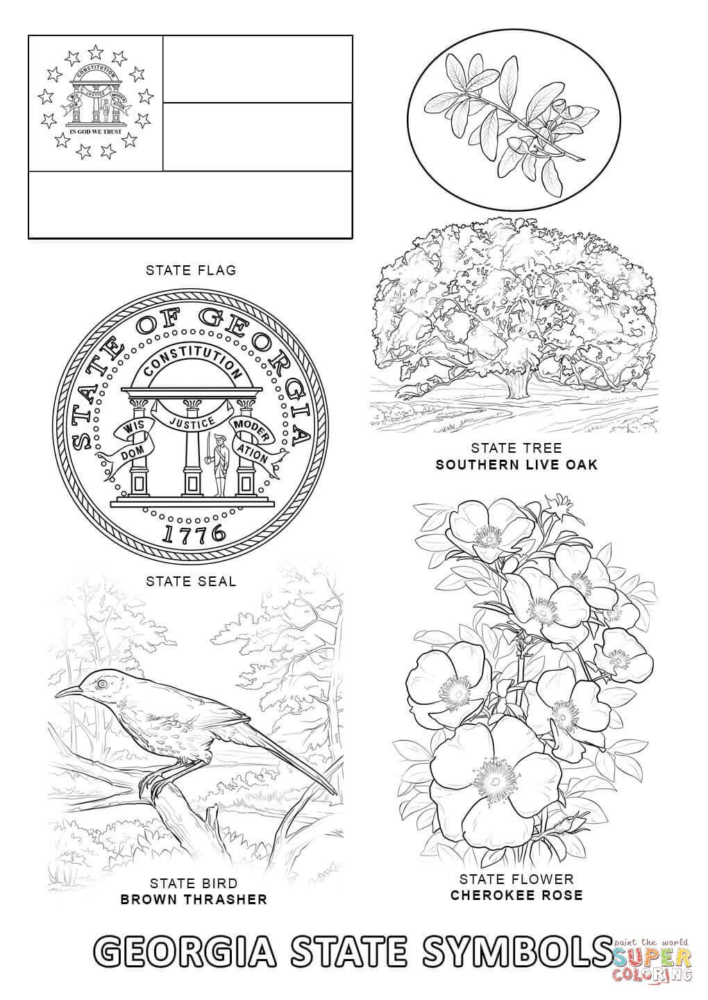 Image Result For Georgia State Symbols Coloring Pages State Symbols