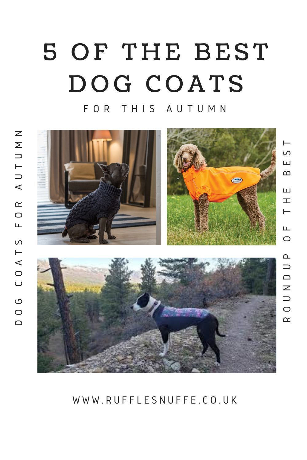 5 Of The Best Dog Coats For Autumn 2020 Product Roundup From Life With Pets In 2020 Dog Coats Dog Activities Dogs