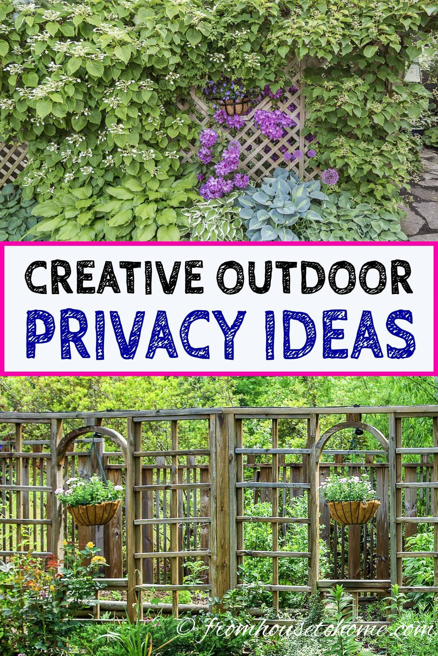 20 Backyard Privacy Ideas For Screening Neighbors Out Backyard Privacy Garden Privacy Garden Screening