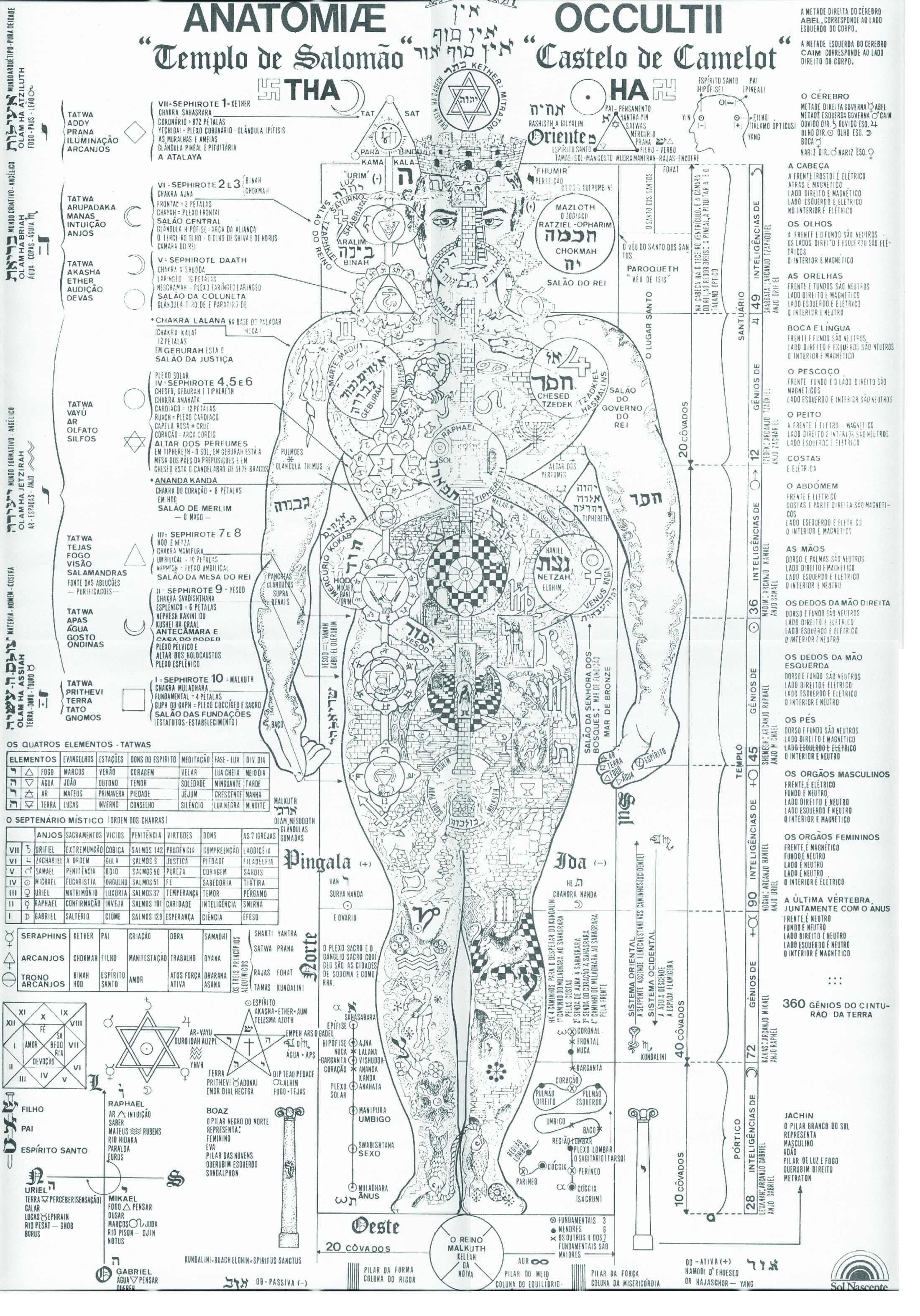 Akwavita - Casa Verde - Zona Norte - Produtos - Anatomia Oculta do ...