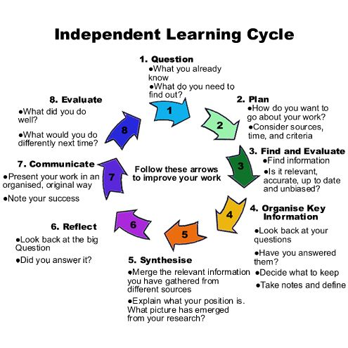 Independent Learning Cycle  Independent Learner