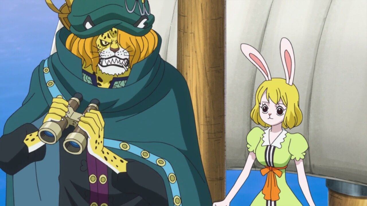 Pedro & Carrot - One Piece Folge 788   One piece nami, Anime, One piece