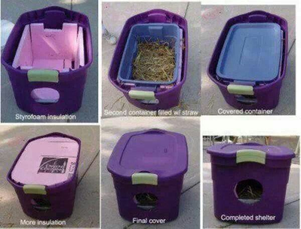 Shelter For Pets Or For Strays If Youre Not Allowes To Have Pets All Animals Deserve To Be Warm Amd Such Feral Cat Shelter Cat Shelter Outdoor Cat House