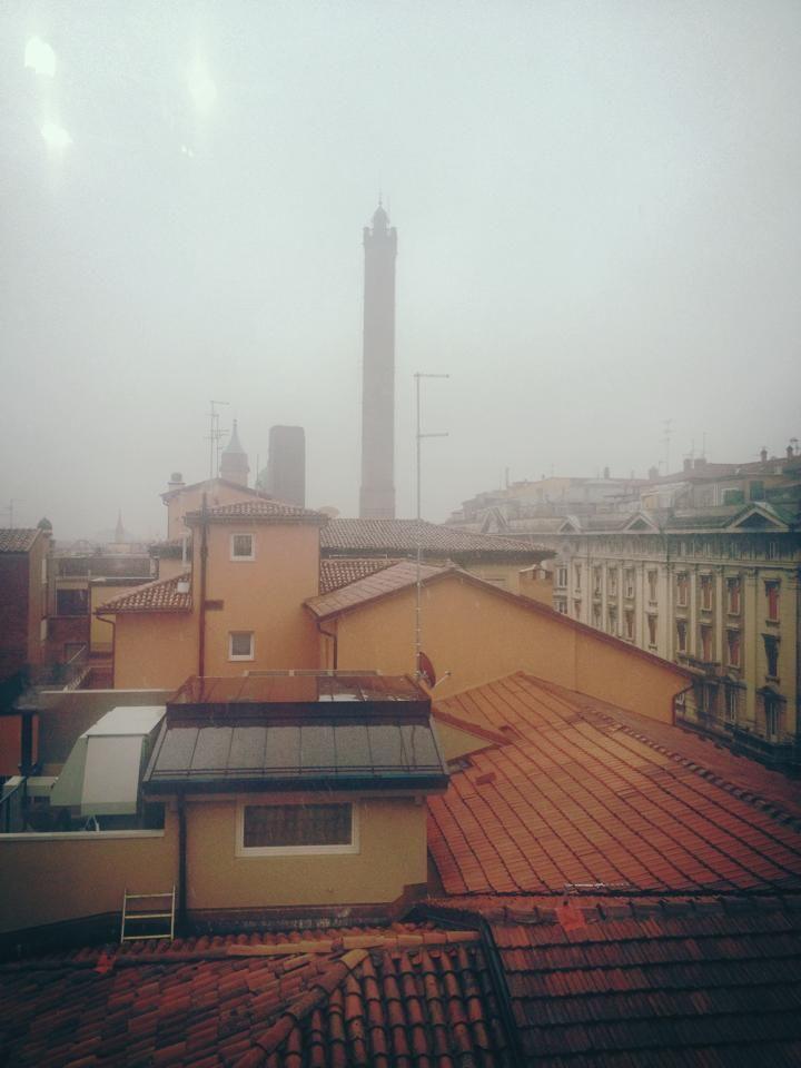 Bologna sotto la neve (non si vede ma c'e') foto di Adele Ghirri