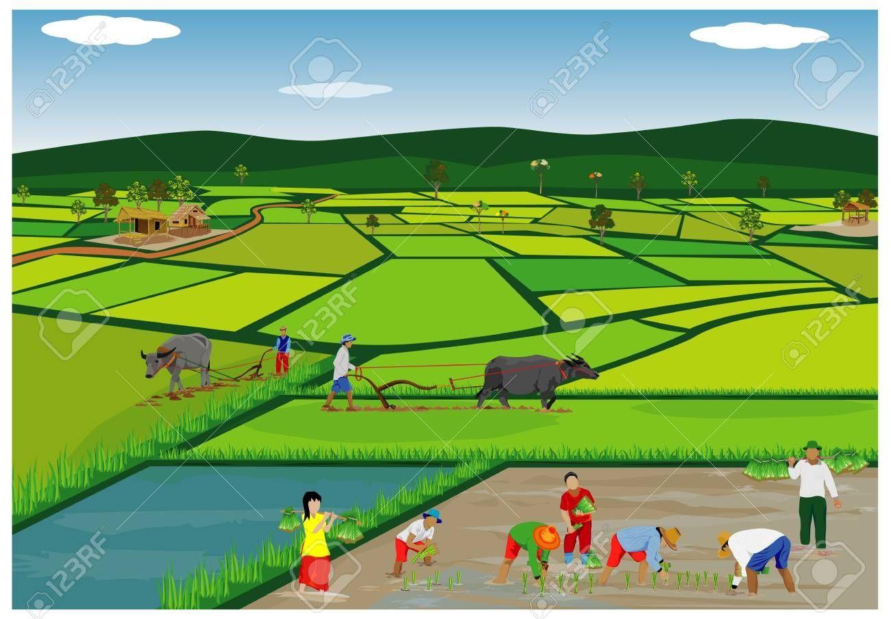 Field Clipart Images Clip Art Landscape Clipart Colour Field