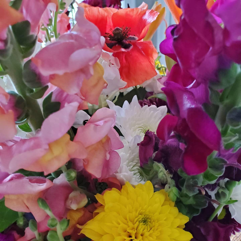 Flowers appear before the fruit. #flowerlove