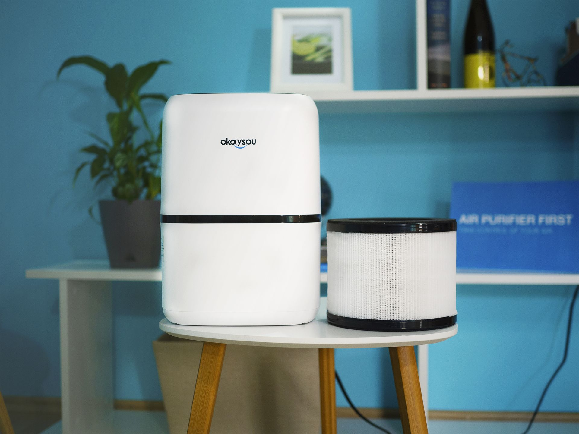 Okaysou AirMic4S Medical Grade Air Purifier Review in