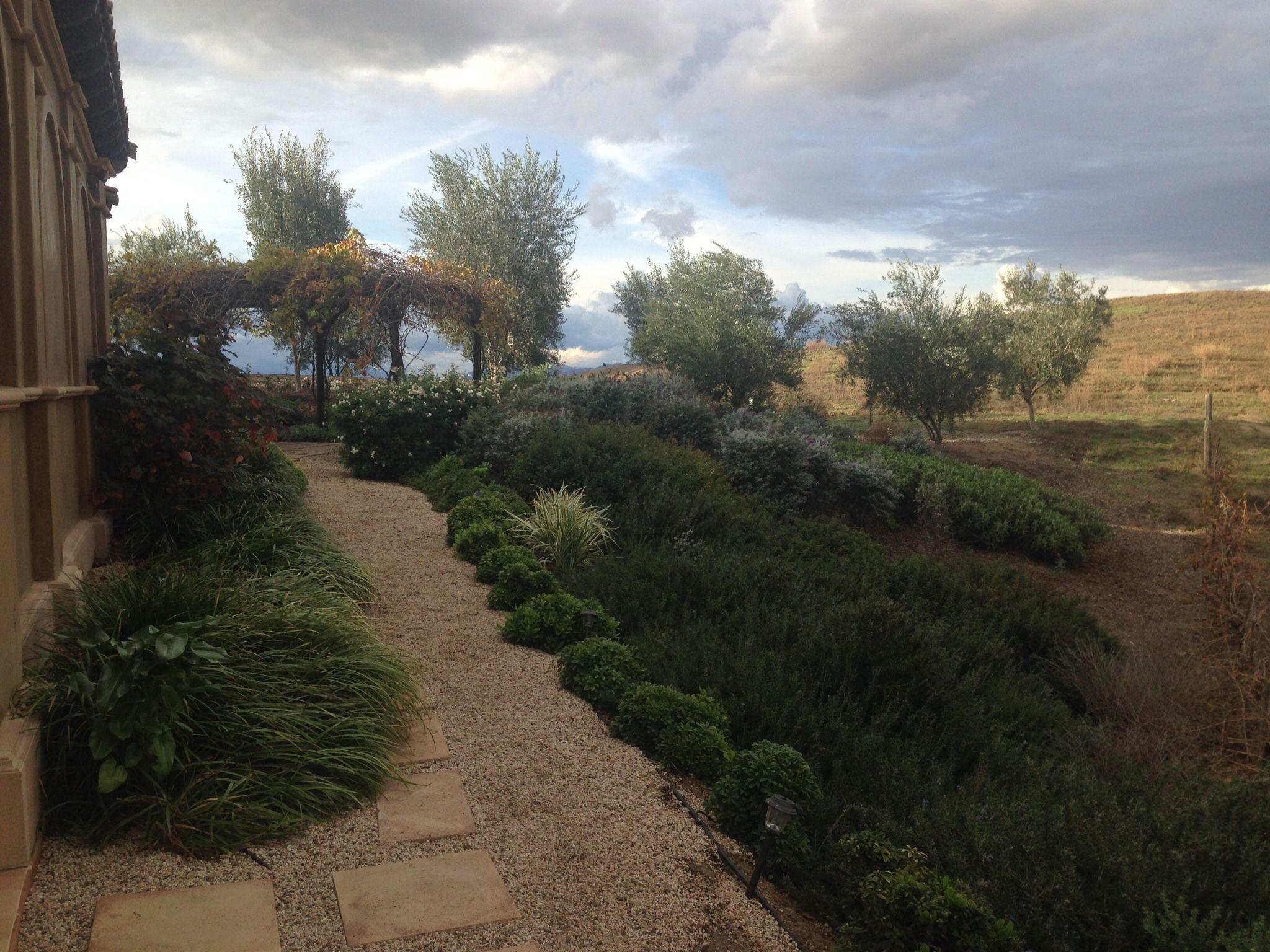 Mediterranean Landscape In Wine Country
