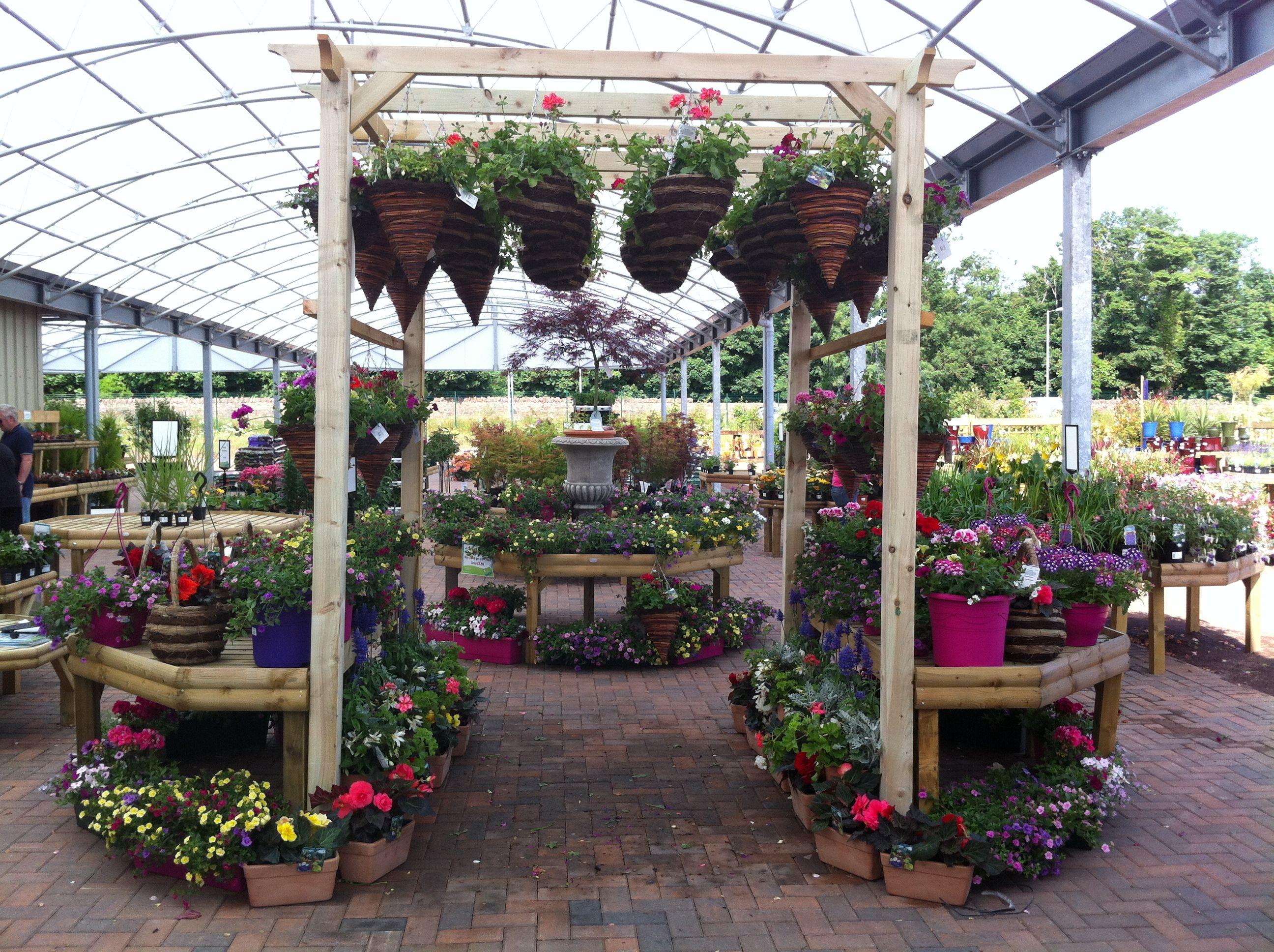 Garden Centre: Hanging Baskets Displayed On A Pergola At Dunbar Garden