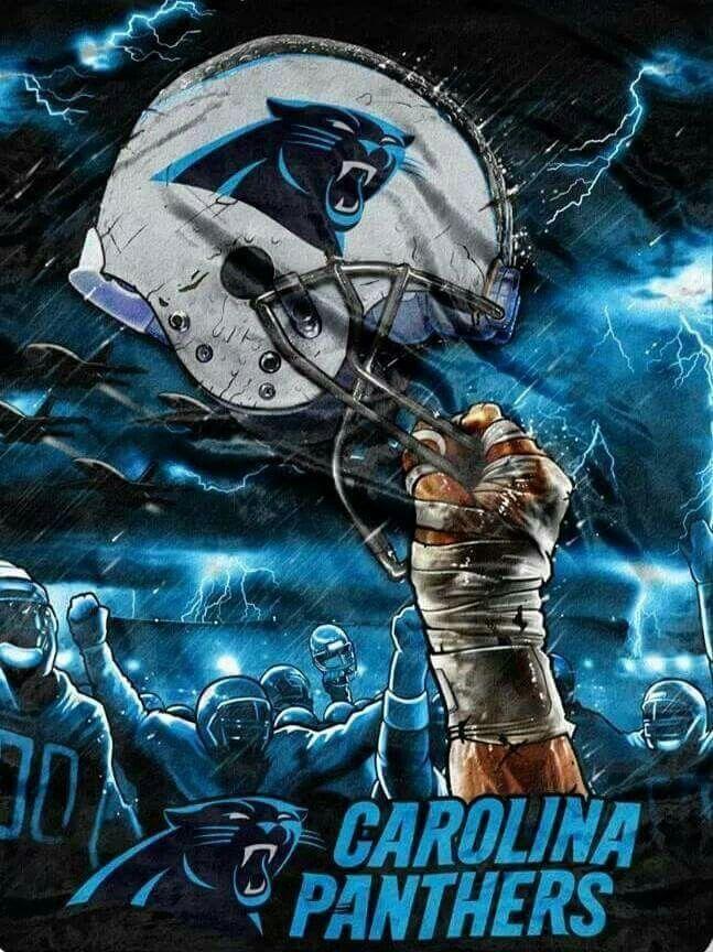 Carolina Panthers Custom Sport Flag in 2020 Carolina