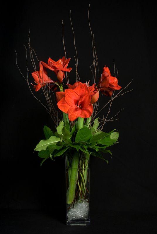 This Is A Floral Arrangement That Features Red Amaryllis Blumen Deko Ideen Ideen