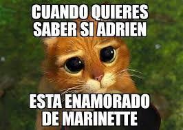 Resultado de imagen para memes de miraculous ladybug en español