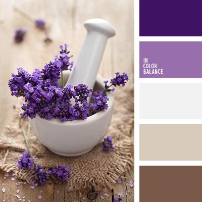 Beige blanco sucio color lila color negro madera de lavanda elecci n del color para el - Gama de colores morados ...