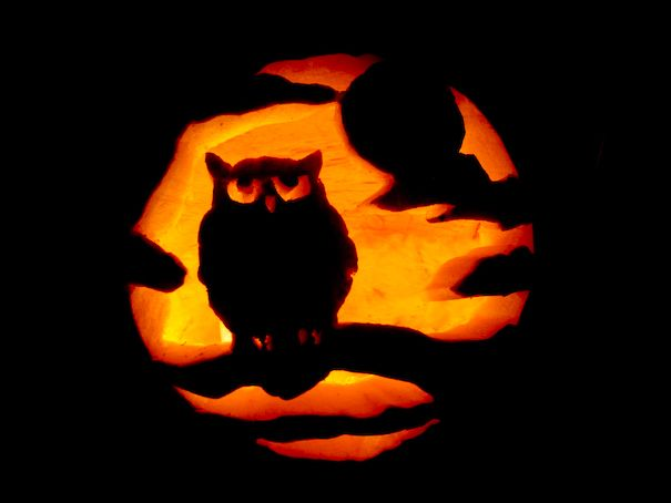 Pumpkin carving ideas pumkin lone wolf and