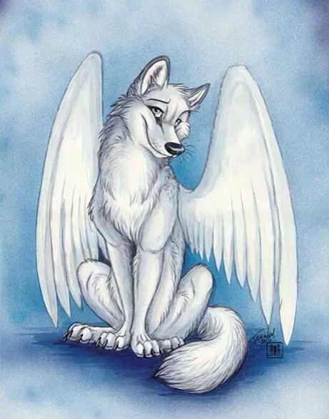 I can see a character like this falling for Sky. Maybe a ... Anime Fire Wolves With Wings