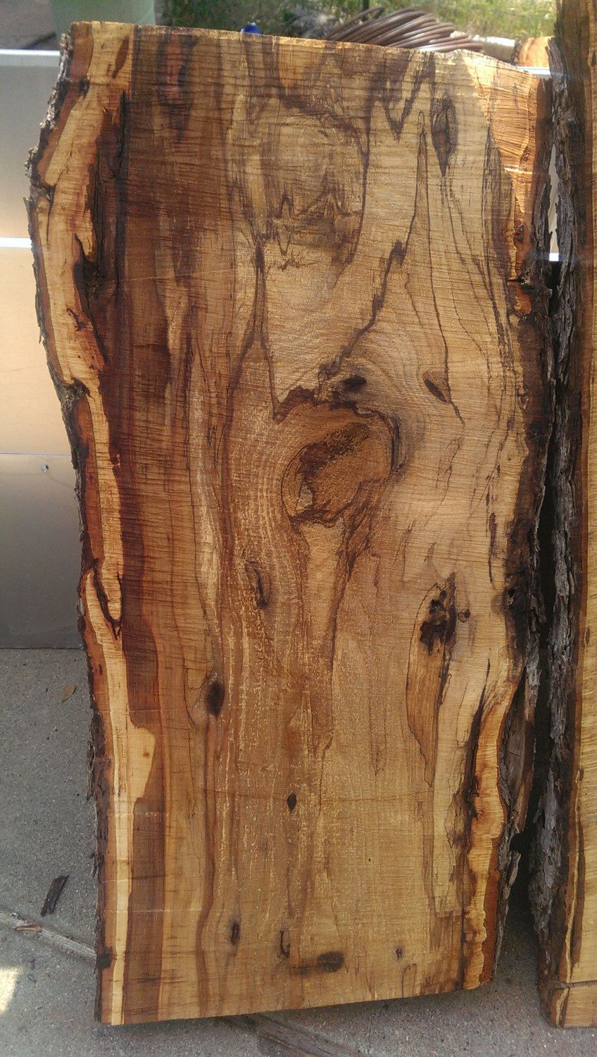 Thick Wood Slabs Oak Pecan And Elm For Countertops