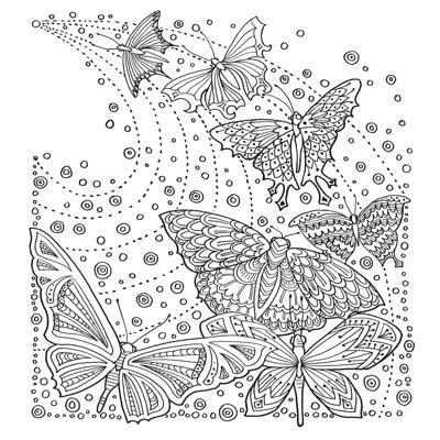 butterflies : zencolor moments | malvorlagen tiere, kostenlose erwachsenen malvorlagen und