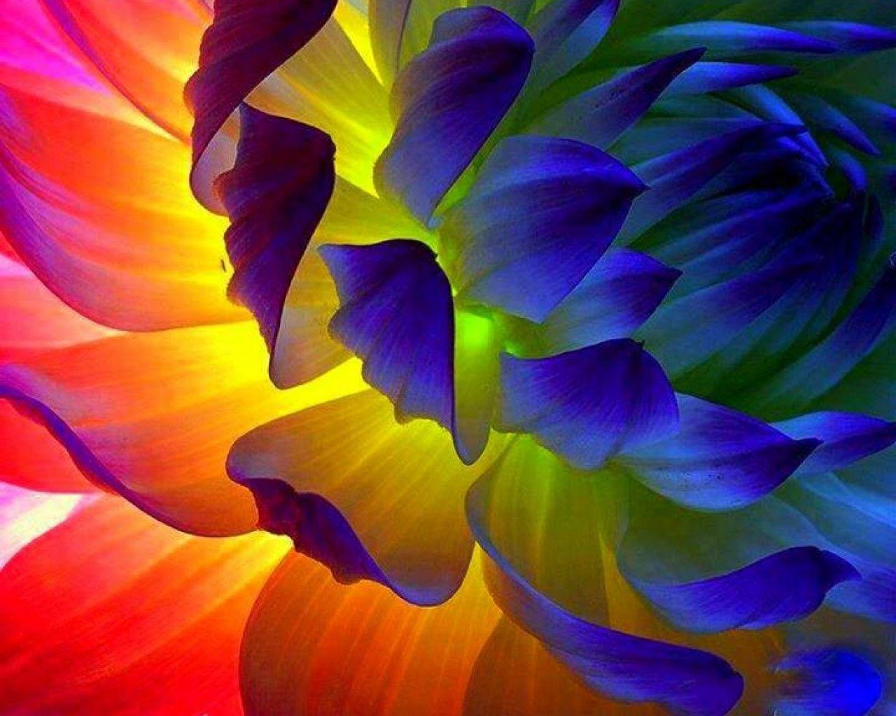 Colour Grains Colours Rainbow Dengan Gambar Wallpaper Iphone