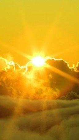 Yellow Sky Nature