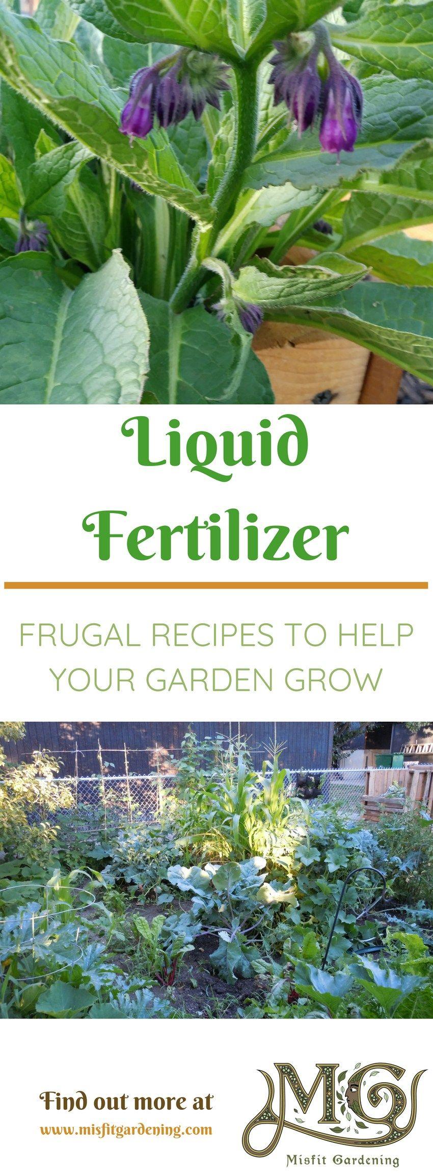 Diy grass clipping liquid fertilizer recipe liquid