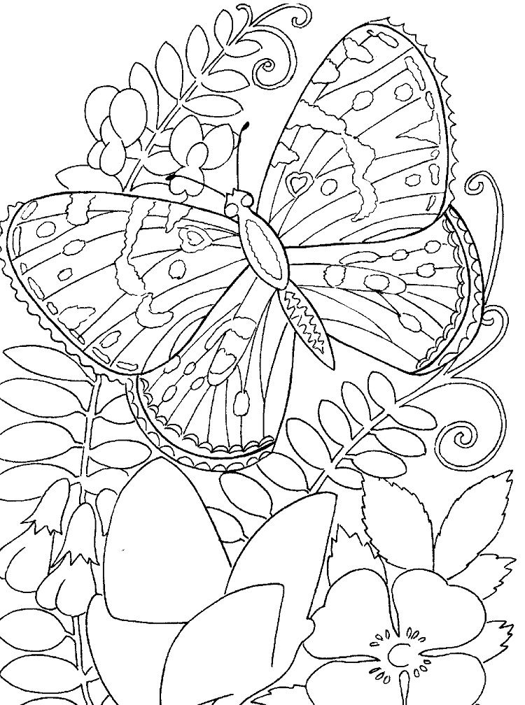 Butterfly Flower Coloring Pages Butterfly Coloring Page Flower Coloring Pages Coloring Pages