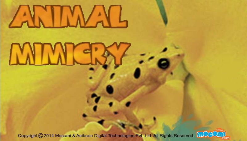 Find out what is animal mimicry, how zebra and tiger stripes are useful and more about types of Mimicry - #Automimicry and #Hostmimicry. For more interacting #Generalknowledge For #Kids, visit: http://mocomi.com/learn/general-knowledge/