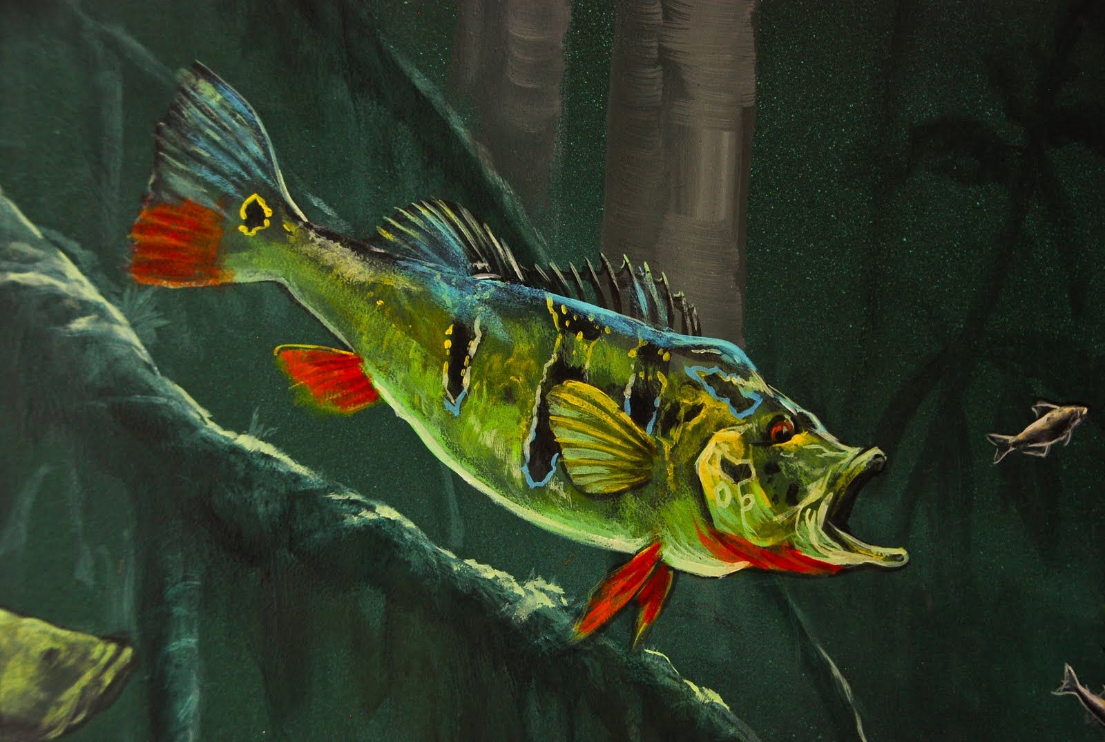 Peacock Bass Fish Art Fish Pet Wildlife Art
