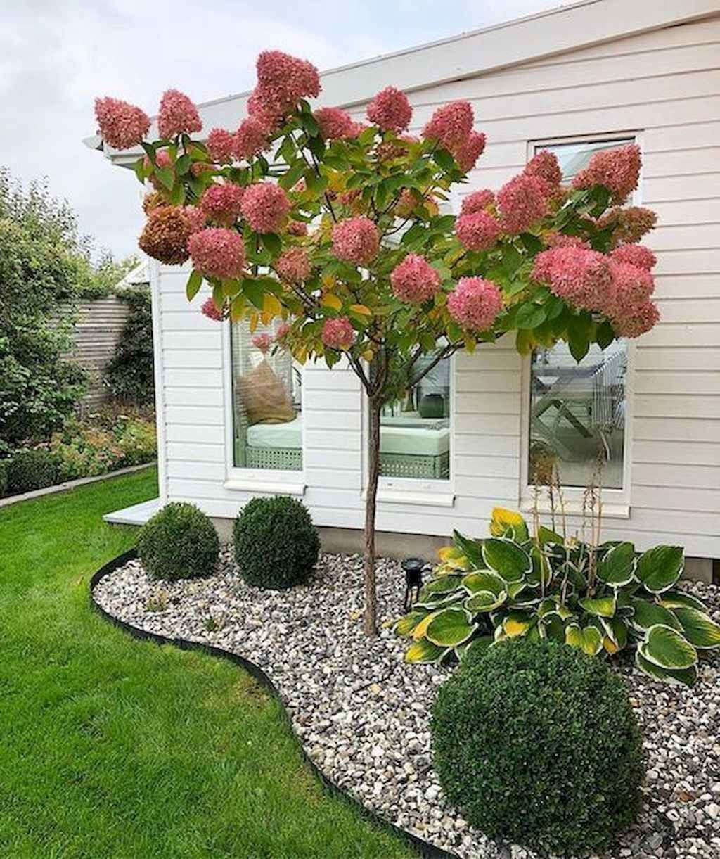 55 Fresh and Beautiful Front Yard Landscaping Ideas Low Maintenance