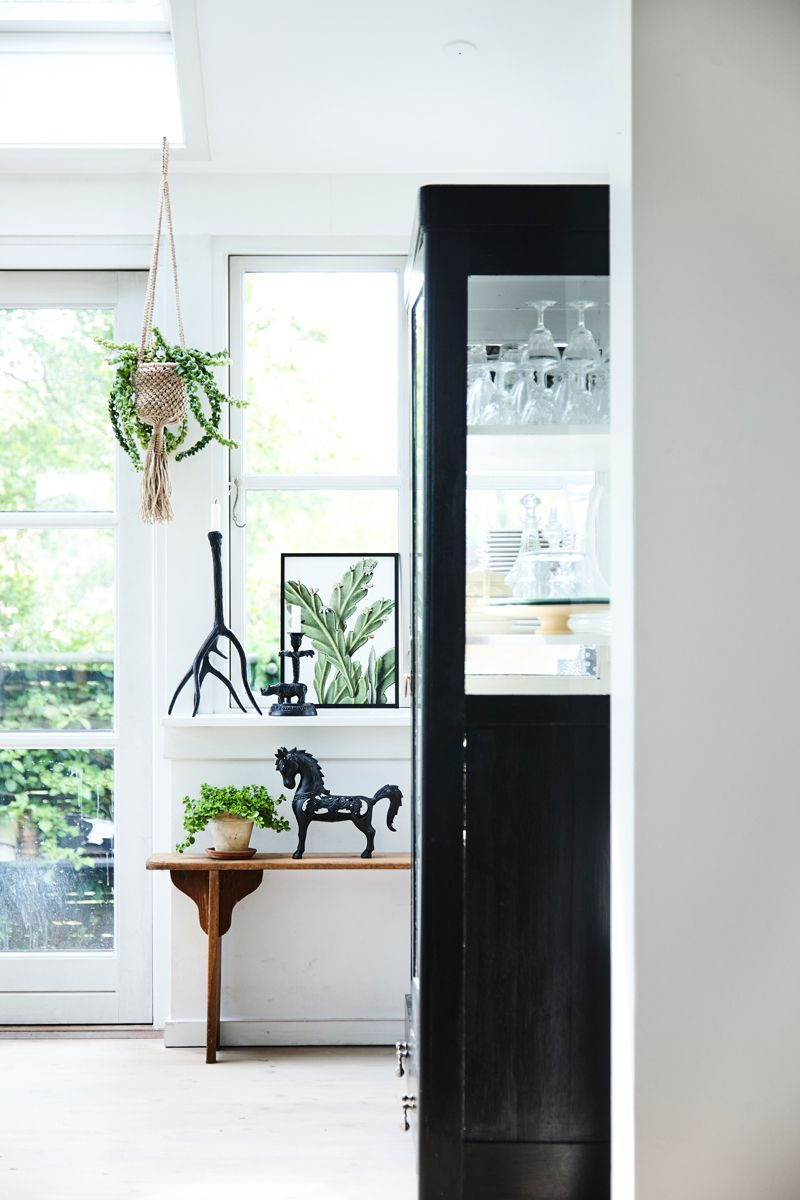 Vanilla Fly - Boer Staphorst | #planten #decoratie #VanillaFly #kast ...