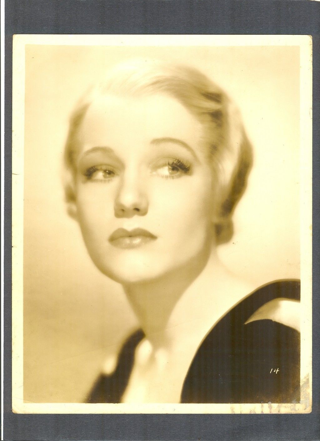 Lovely Blonde Constance Cummings British Actress of Stage Screen | eBay