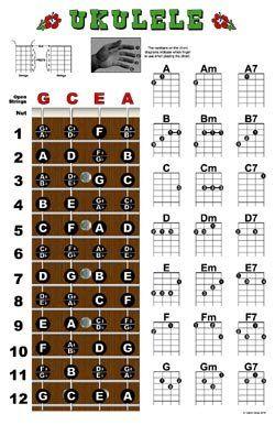 Amazon.com: Ukulele Fretboard and Chord Chart Instructional Poster Uke: Musical Instruments