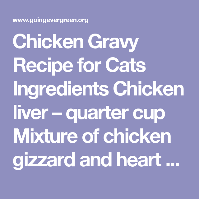 Chicken Gravy Recipe For Cats Ingredients Chicken Liver Quarter Cup Mixture Of Chicken Gizzard And Heart Half A Homemade Cat Food Diy Cat Food Chicken Cat