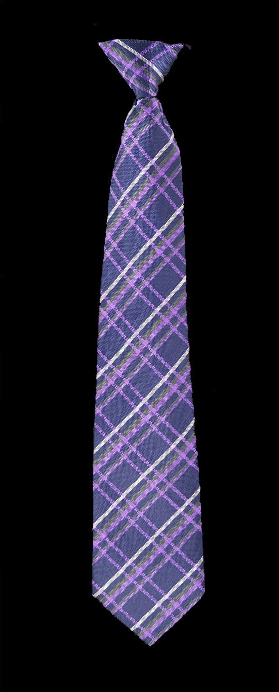Wedding Groomsman Ties with a Flask!!!  What a great groomsmen's gift idea! FlaskTie - Purple with Lavender and Tan  $24.95